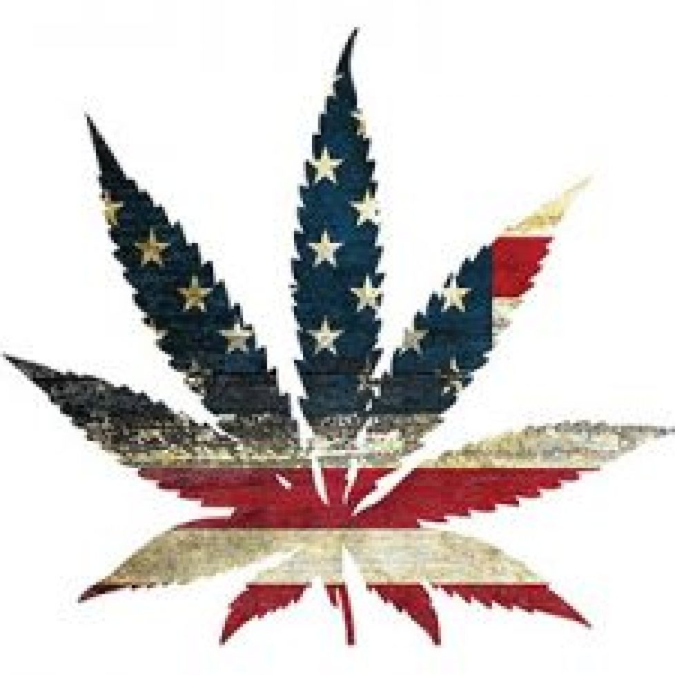 america-weed-400x300