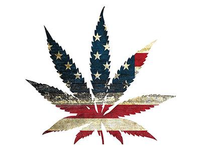 america-weed-400x300